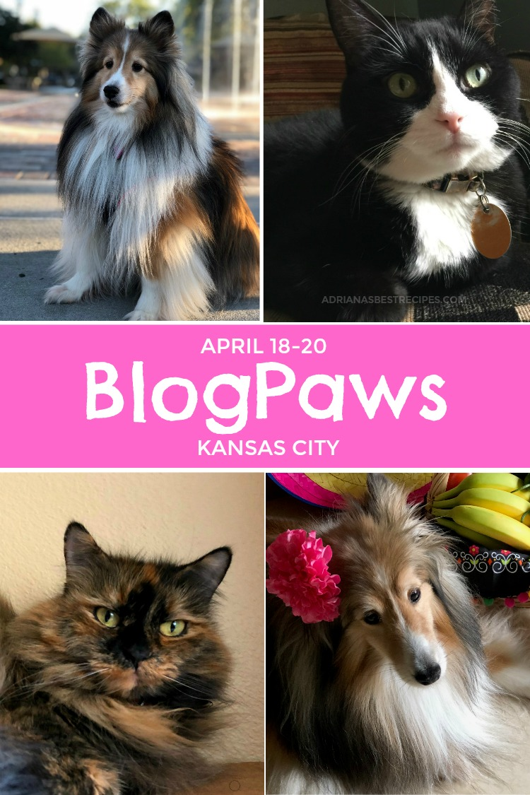 Joining Chewy and the BlogPaws fun in Kansas City next April 18-20