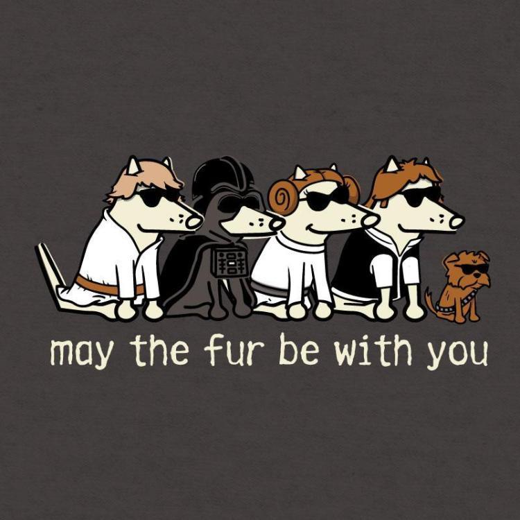 Mayo Cuatro Día de Star Wars