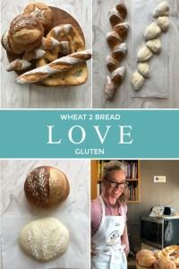 El amor at trigo, el pan y el gluten