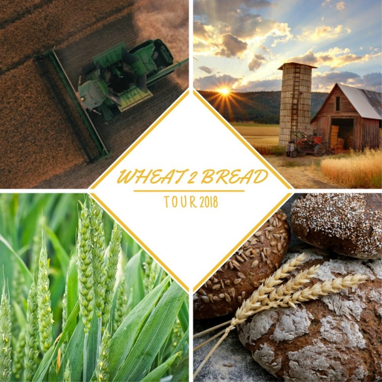 Wheat 2 Bread Tour