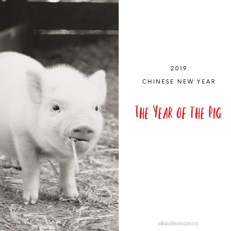 2019 Chinese New Year the Year of the Pig