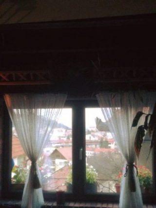 Deschide, Doamne, fereastra....acasă!