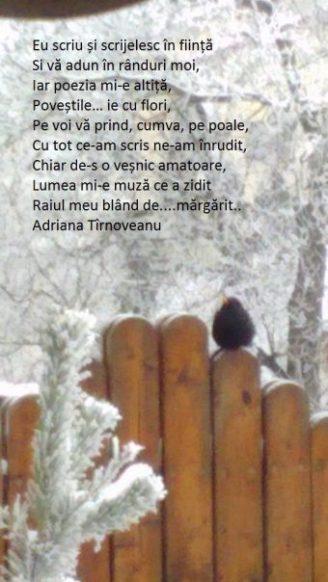 poezie 8