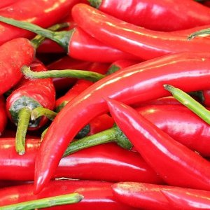 Chilli- Indian Spices Exporters