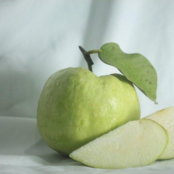 AdriannaSprings Exports Guava