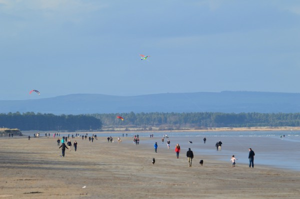 Kites on the West Sands