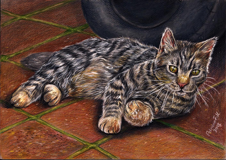 Katze///Farbstift