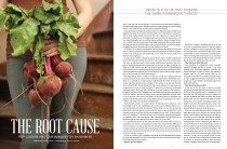 The Root Cause, Darling Magazine Issue No. 3