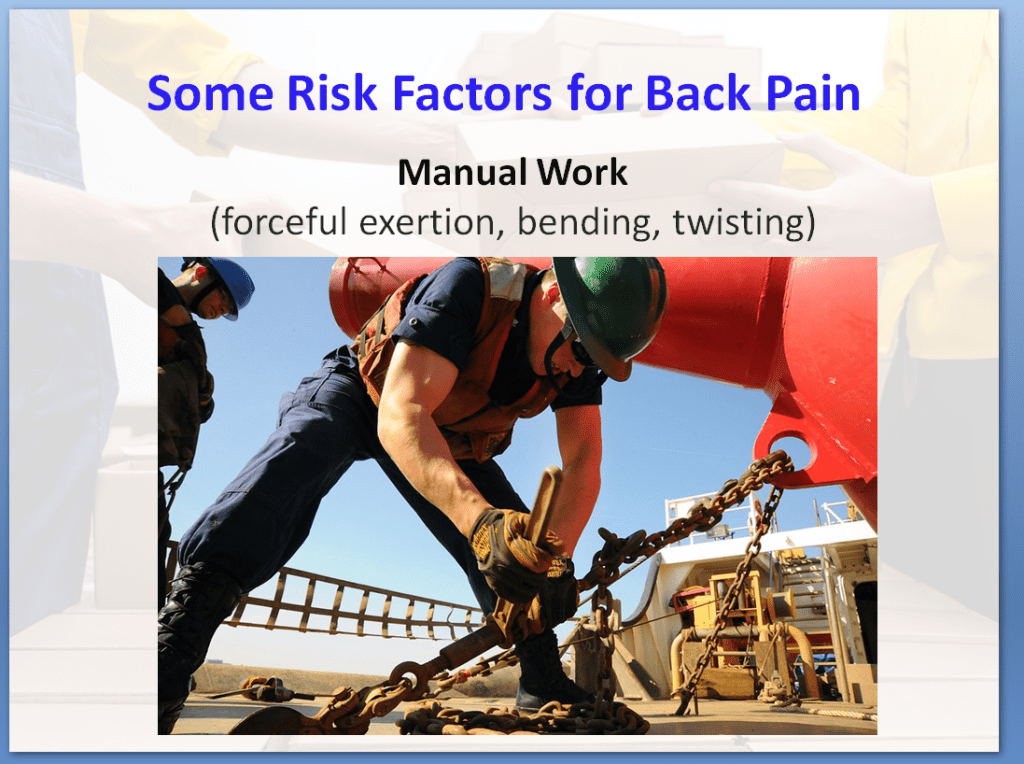 Manual Handling Awareness Training Course | Some Risk Factors for Back Pain