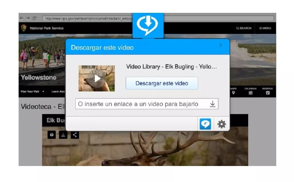 RealPlayer - reproductores de vídeo