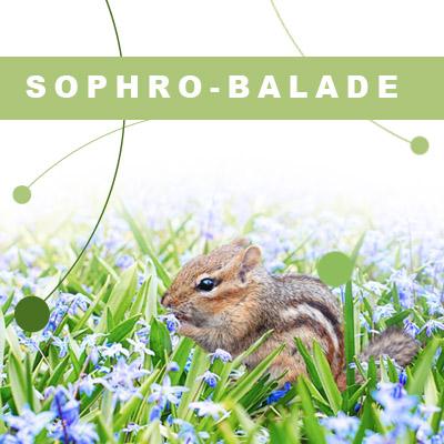 Formation de sophro-balade