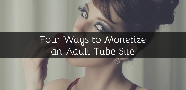 Four Ways to Monetize an Adult Tube Site