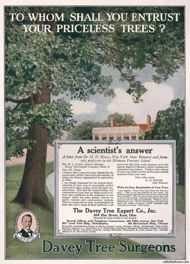 Ad for Davey Tree Surgeons found in the April 1917 issue of Countryside / Suburban Life magazine.