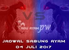 jadwal sabung ayam 04 juli 2017