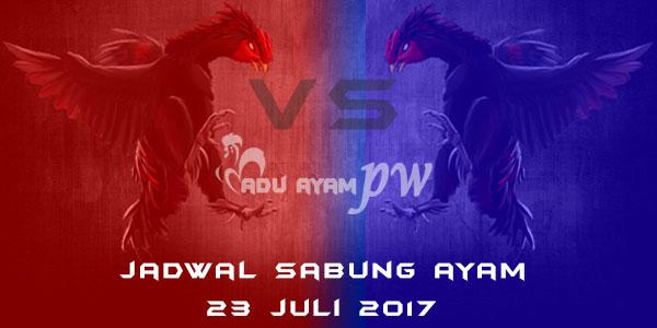 jadwal sabung ayam 23 juli 2017