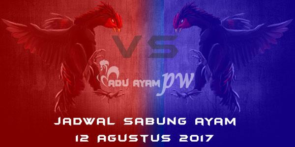 jadwal sabung ayam 12 Agustus 2017