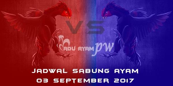 jadwal sabung ayam 03 September 2017