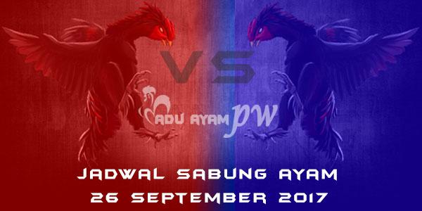 jadwal sabung ayam 26 September 2017