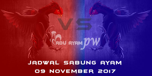 jadwal sabung ayam 09 November 2017