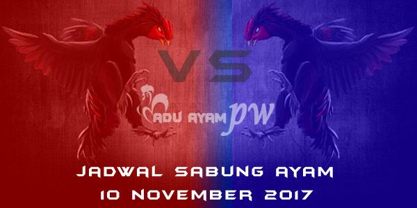 jadwal sabung ayam 10 November 2017