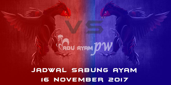 jadwal sabung ayam 16 November 2017