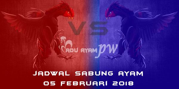 jadwal sabung ayam 05 Februari 2018