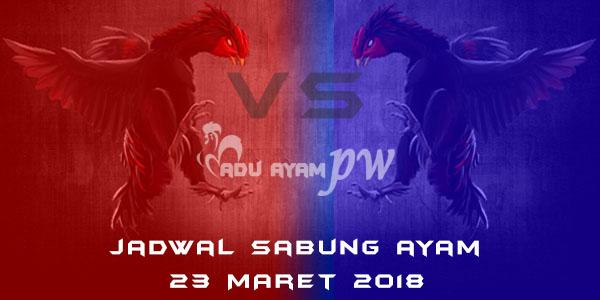 jadwal sabung ayam 23 Maret 2018