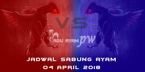 jadwal sabung ayam 04 April 2018