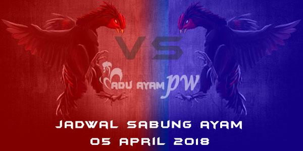 jadwal sabung ayam 05 April 2018
