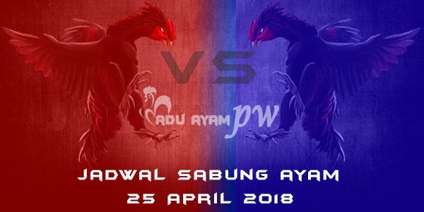 jadwal sabung ayam 25 April 2018