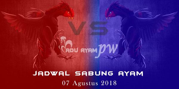 Jadwal Sabung Ayam 07 Agustus 2018