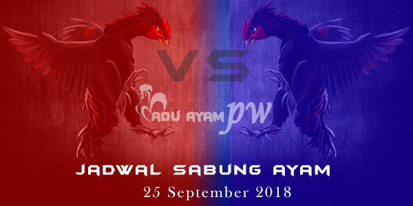 Jadwal Sabung Ayam 25 September 2018