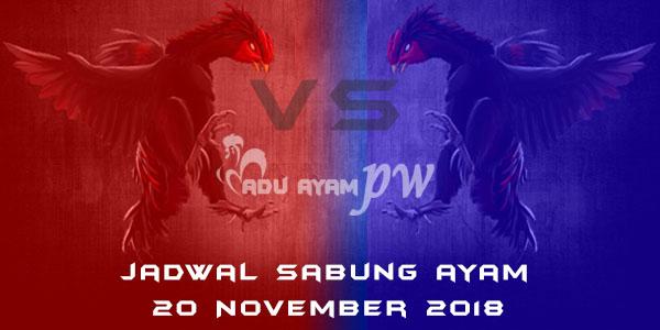 Jadwal Sabung Ayam 20 November 2018