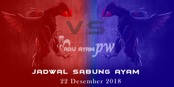 Jadwal Sabung Ayam 22 Desember 2018