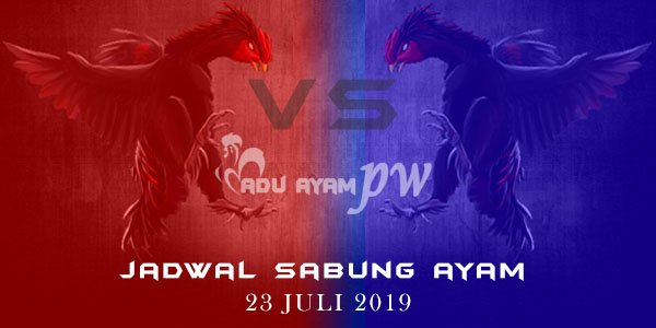 Adu Ayam PW - Jadwal Sabung Ayam 23 Juli 2019