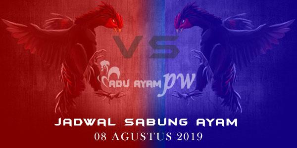 Adu Ayam PW - Jadwal Sabung Ayam 08 Agustus 2019