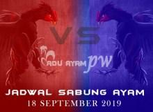 Prediksi Dan Jadwal Resmi Adu Ayam 18 September 2019