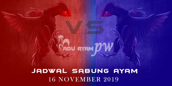 Jadwal Pertandingan Adu Ayam Online 16 November 2019