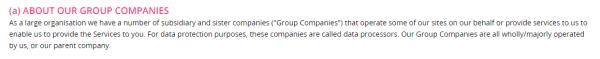 black wink group companies