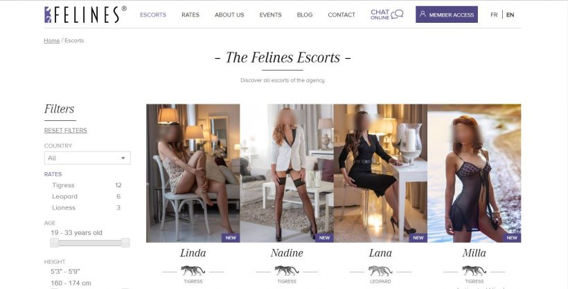Felines Escort Review screenshot