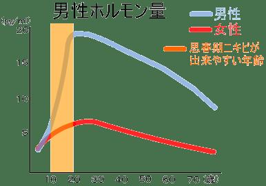 男性ホルモン分泌量グラフ