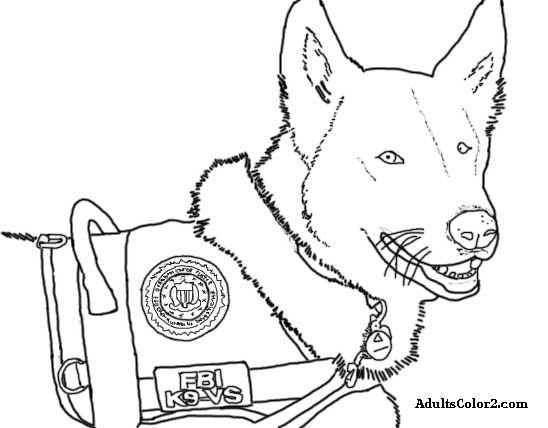 Working Dogs: Crucial Canines