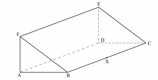(a) Draw a net of the prism. (2 marks)