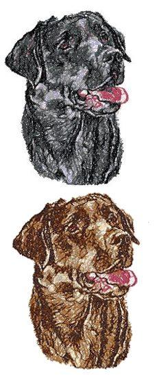 Advanced Embroidery Designs  Labrador Retriever Black Lab Chocolate Lab