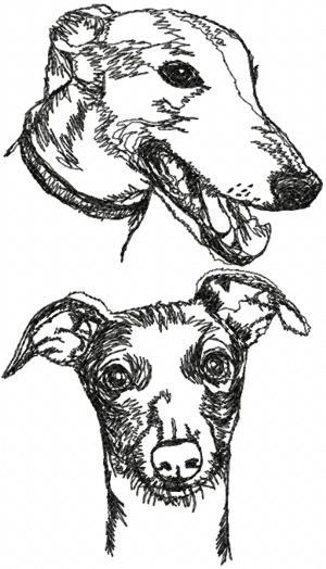 Greyhound Machine Embroidery Design  Free Embroidery Patterns