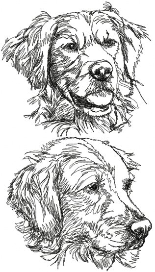 Advanced Embroidery Designs  Golden Retriever Set