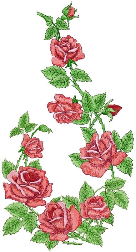 rose arbor set