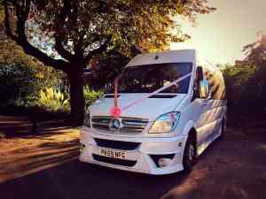 Luxury Minibus Wedding Hire Trees