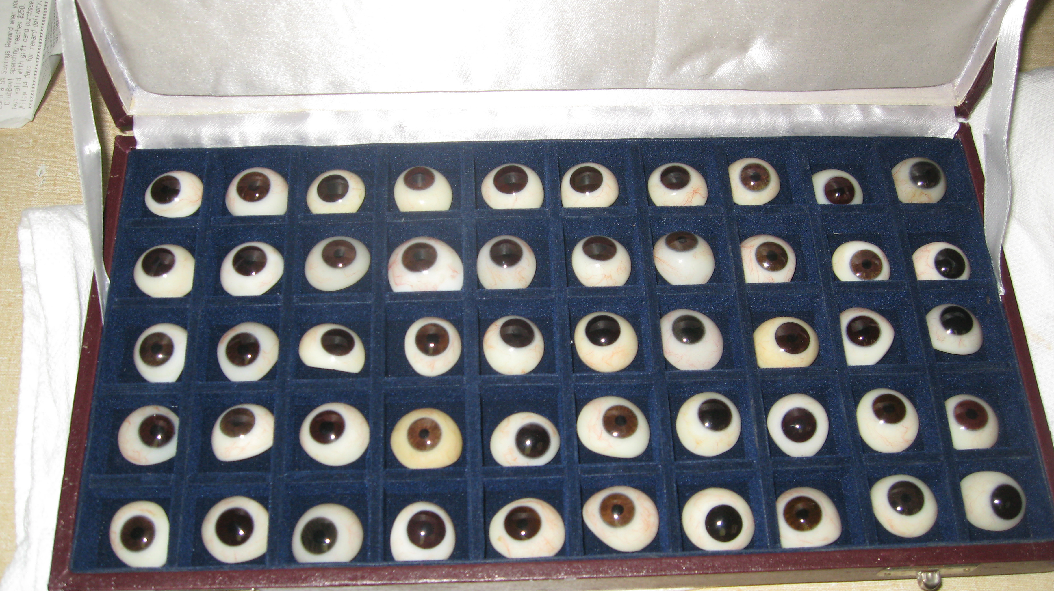 stock prosthetic eye case