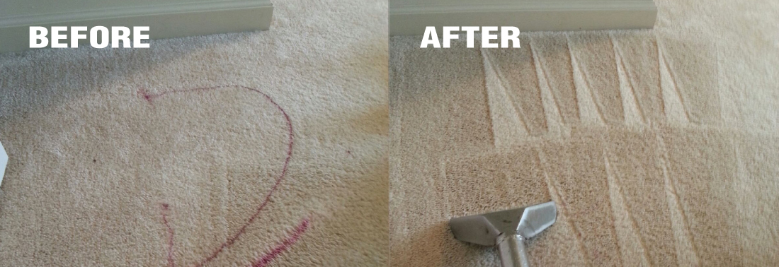 carpet cleaning western massachusetts
